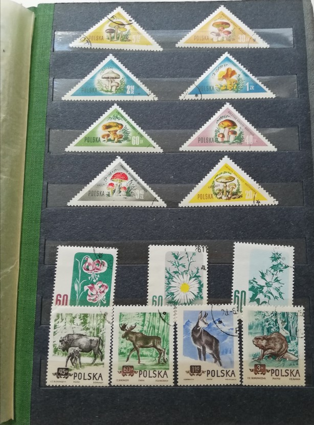 The photograph features a page taken out of a post stamp album with a collection of post stamps. At the top there are some triangular post stamps and at the bottom of the page some rectangular post stamps are placed. The triangular ones present various species of fungi whereas the rectangular ones feature various species of flowers and wild animals.